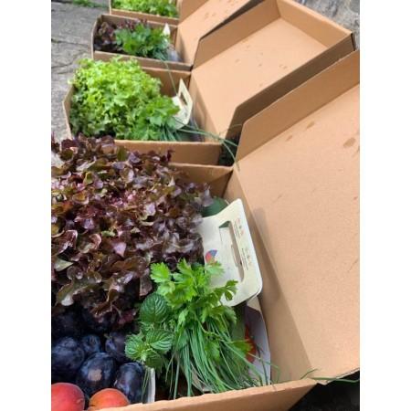 Ovoce & Zelenina - malá bedýnka 6 kg