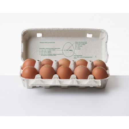 Čerstvá vejce - vejce z volného chovu, 10ks